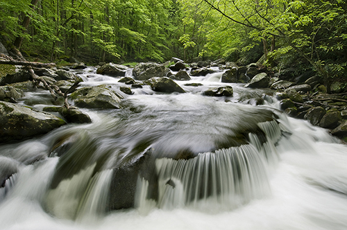 Smoky Mountain Stream_sm
