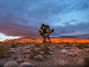Recreation Lands in Nevada