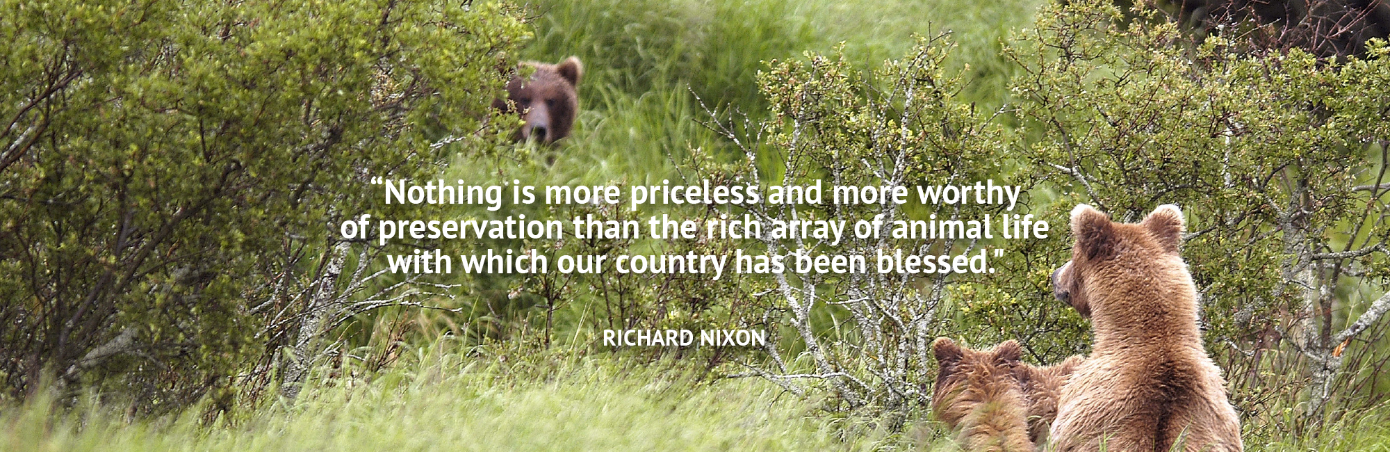 Richard Nixon Quote
